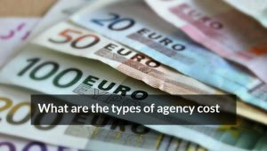What are the types of agency cost