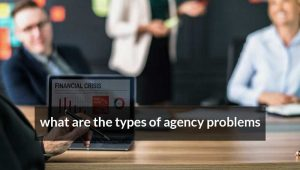 What are the types of agency problems