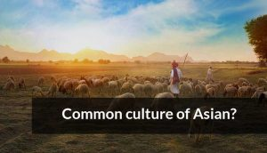 Common culture of Asian?